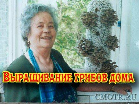 Выращивание грибов дома (2012) DVDRip