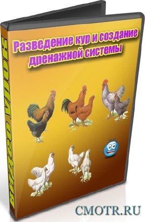 Разведение кур и создание дренажной системы (2012) DVDRip