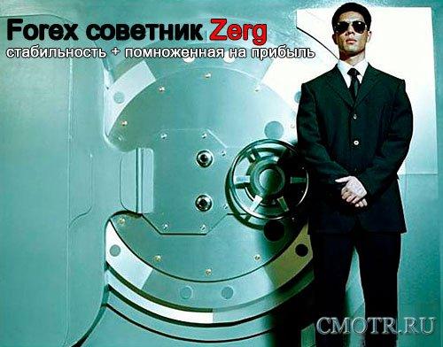 Советник Forex Zerg 1.0