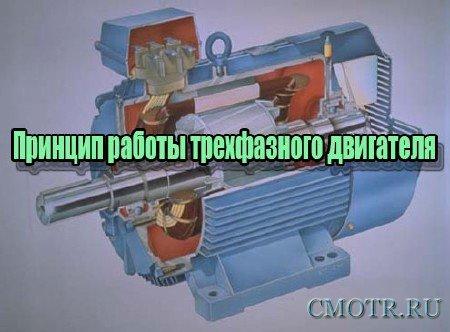 Принцип работы трехфазного двигателя (2013) DVDRip