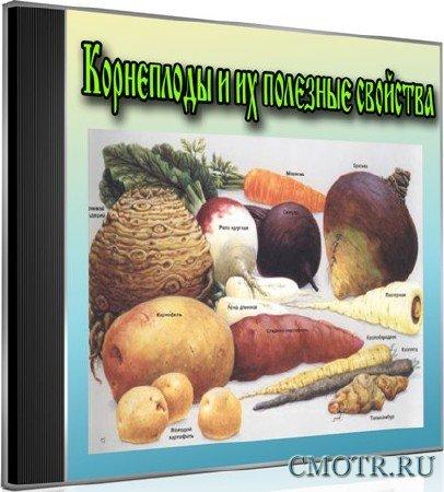 Корнеплоды и их полезные свойства (2013) DVDRip