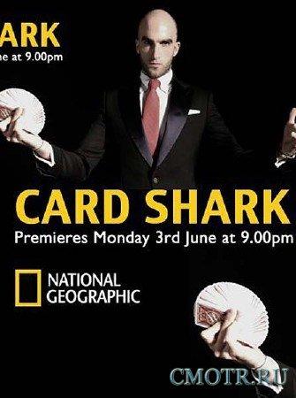 Карточный фокусник / Card Shark (2013) SATRip