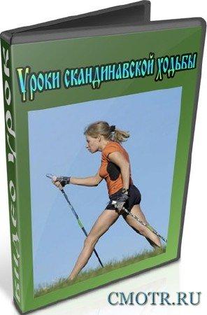 Уроки скандинавской ходьбы (2013) DVDRip