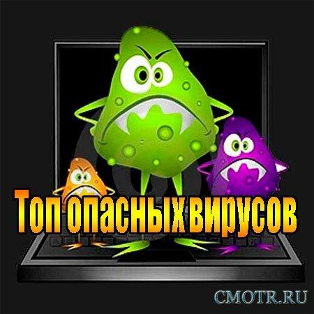 Топ опасных вирусов (2013) DVDRip