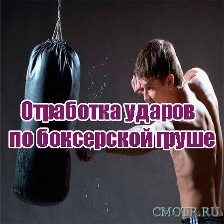 Отработка ударов по боксерской груше (2013) DVDRip