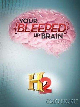 Ваш запудренный мозг (3, 4 серии) / Your Bleeped Up Brain (2013) SATRip