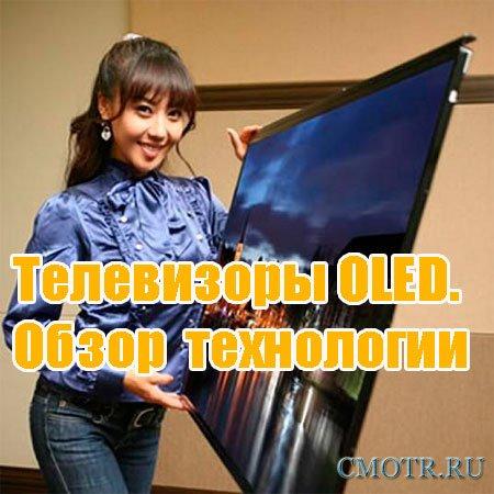 Телевизоры OLED.  Обзор  технологии (2013) DVDRip
