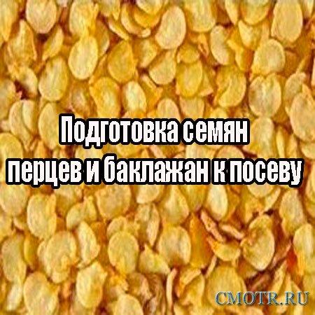 Подготовка семян перцев и баклажан к посеву  (2013) DVDRip